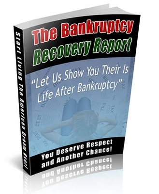 Product picture Bankruptcy Niche Package